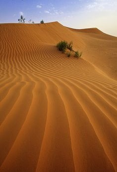kalahari-red-dune-sand-body-scrub-at-the-spa-room-cape-town-south-africa